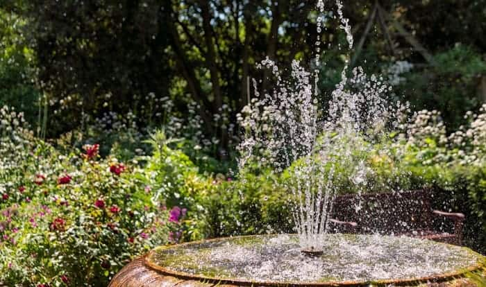 prevent-mosquitoes-in-bird-bath