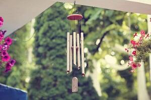 get-rid-of-birds-on-my-porch