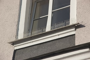 keep-birds-from-nesting-on-your-porch